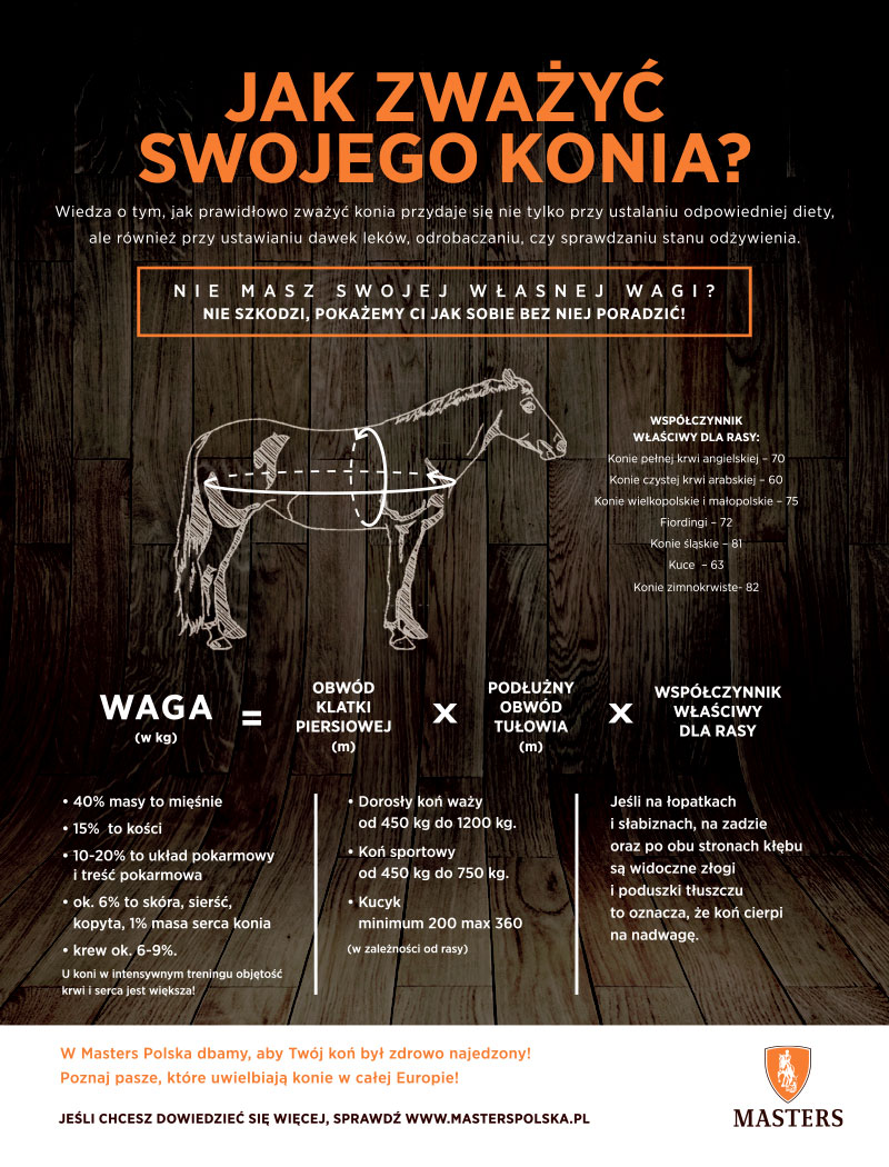 WAGA konia