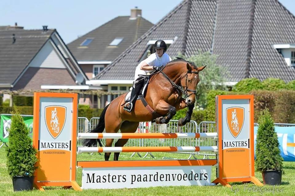 pasza dla koni masters