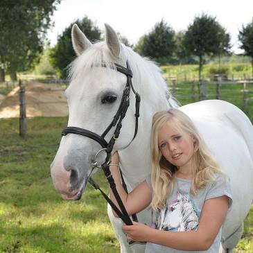Jaka pasza dla koni małych i kuców?