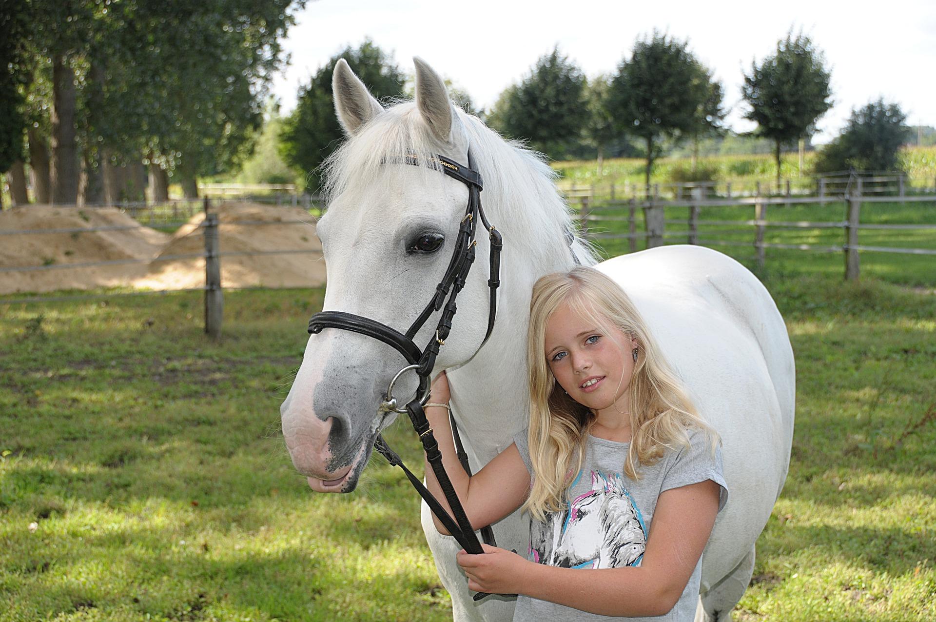 pasza dla małych koni