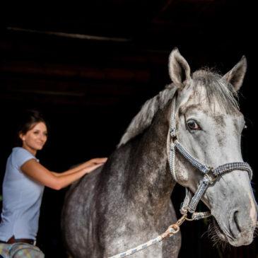 Masaż i pasza dla koni, czyli mieszanka bardzo prozdrowotna!