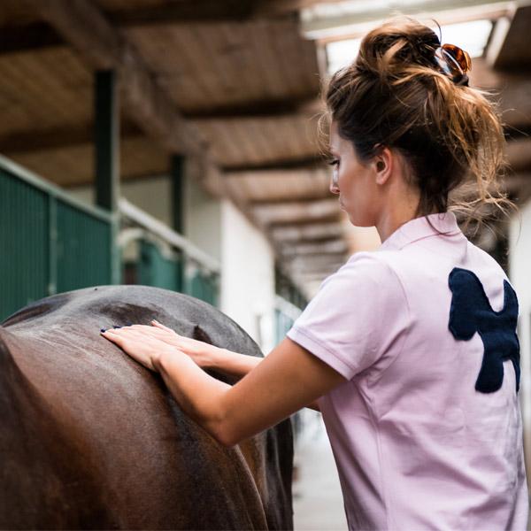 zbilansowane żywienie koni