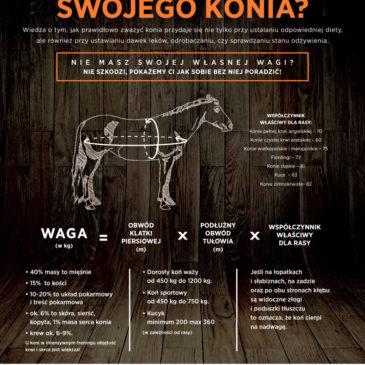 Ile waży Twój koń? Policz razem z Masters Polska pasza dla koni