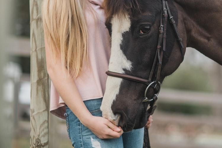 suplementy dla koni