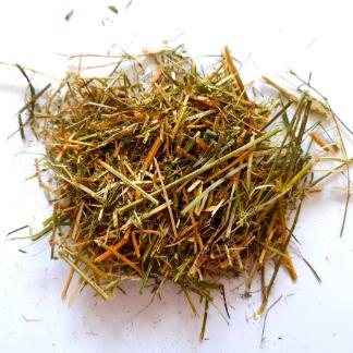 Sieczka z lucerny dla koni 10kg - olejowana czysta lucerna