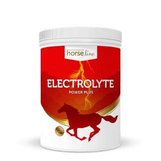 HorseLinePRO Electrolyte Power Plus - elektrolity dla koni z glukozą